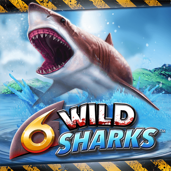 6 Wild Sharks Thumbnail