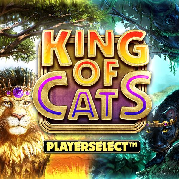 King of Cats Thumbnail
